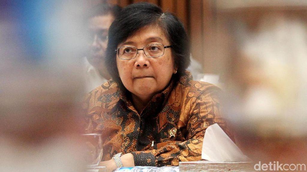 Menteri LHK Ungkap Perintah Jokowi Cegah Karhutla Sedari Lebaran