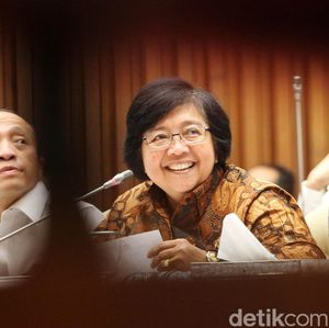 Cerita Menteri LHK Begadang Bereskan Masalah Freeport