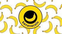 Wow! Kini Ada Bananacoin, Mata Uang Virtual untuk Investasi Pisang Organik
