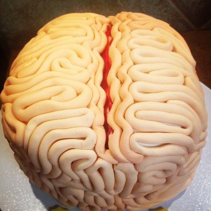 Rasanya amat menyeramkan jika melihat organ-organ yang ada di dalam tubuh manusia. Foto: Instagram