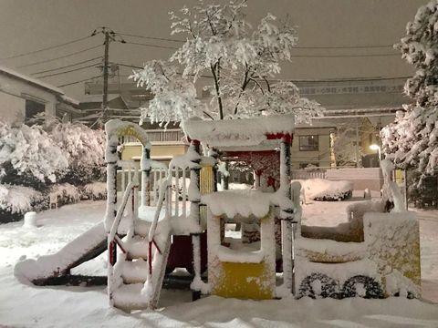 Timbunan Salju Tebal di Tokyo