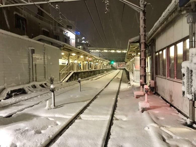 Cerita WNI yang Tinggal di Jepang Saat Tokyo Alami Suhu Terdingin
