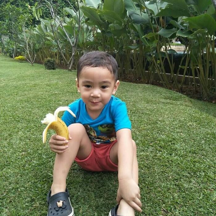 Putra dari Raffi Ahmad dan Nagita Slavina ternyata sangat menyukai pisang. Rafathar terlihat sedang menikmati buah ini di taman rumahnya. Foto: Istimewa