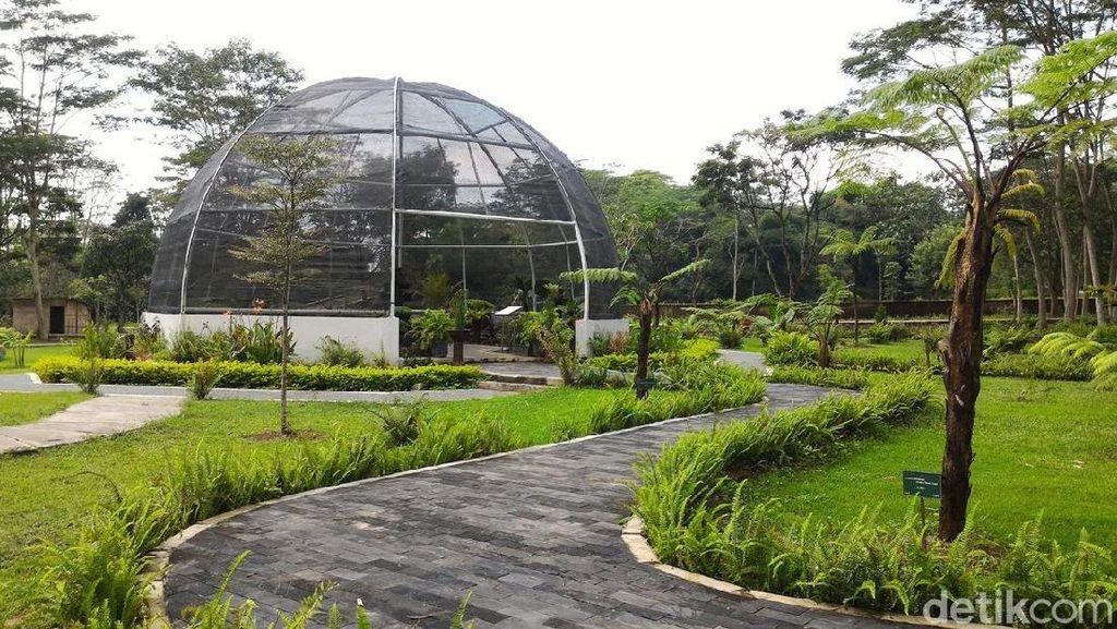 Bukan di Bogor, Ini Kebun Raya di Boyolali