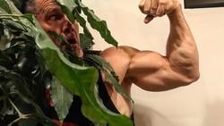 Aktor Josh Brolin mendapat kesempatan untuk menjadi tokoh superhero Cable di film Deadpool 2. Untuk itu ia harus mengubah tubuhnya jadi lebih berotot.