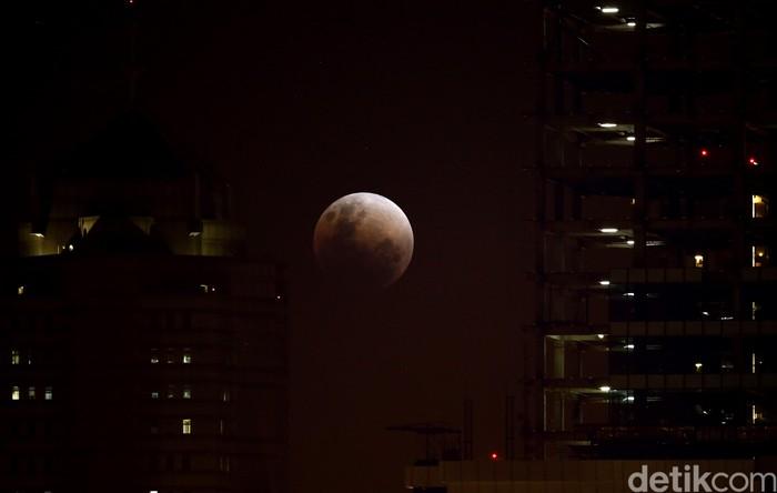 Gerhana bulan total pada Januari kemarin di Jakarta. Foto: Rachman Haryanto