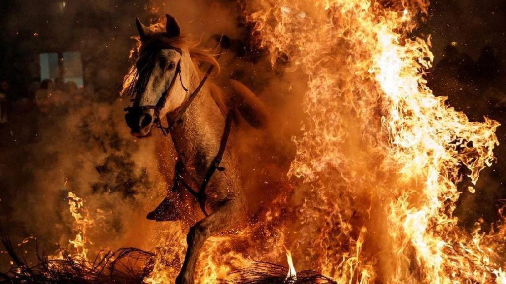 Festival Paling Ngeri di Spanyol: Naik Kuda Lompati Api