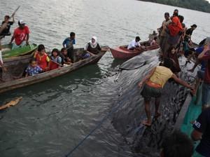 Foto: Paus Sperma Terdampar di Bombana Sultra