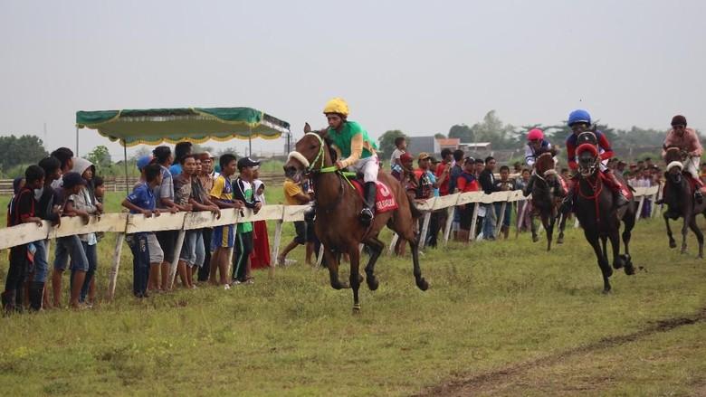 100 Peserta Ramaikan Pacuan Kuda Piala Menpora di Sidoarjo