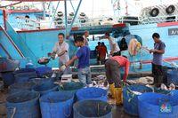Petani Rumput Laut RI Gugat Perusahaan Thailand, Kenapa?