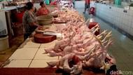 Musim Hujan, Harga Daging Ayam Mahal