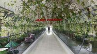 jambi paradise destinasi asyik di kota jambi