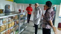 Industri Susu Sapi Perah di Probolinggo akan Dikembangkan