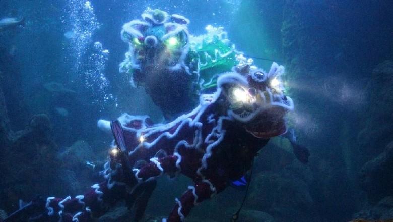 Foto: Pertunjukan Barongsai dalam air di Seaworld (Ancol)