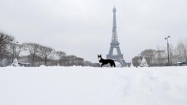 Menara Eiffel juga diselimuti salju.