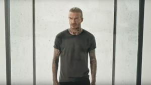 Kampanye Malaria, David Beckham Rela Dikerubuti Ribuan Nyamuk
