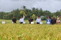 Selamatkan Petani, Mentan Siapkan Rp 7 M untuk Serap Gabah