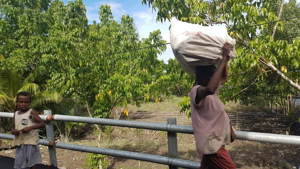 Bangun Jalan di Asmat, Material Harus Dibawa dari Surabaya