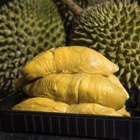 Tingginya Permintaan Durian dari China, Lingkungan Malaysia Terancam Rusak