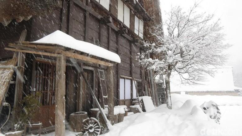 Desa Shirakawa Bersalju di Jepang (Fitraya/detikTravel)