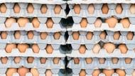 Terkontaminasi Salmonella, 200 Juta Telur Ditarik dari Pasar AS