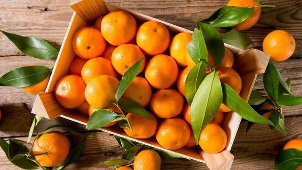 tips memilih jeruk mandarin