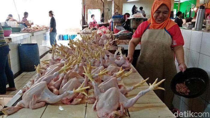 Ilustrasi Penjual Ayam/Foto: Trio Hamdani