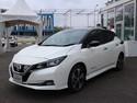 Bicara Mobil Listrik di Indonesia, Nissan Minta Waktu