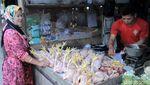 Harga Ayam di Bandung Sudah Normal