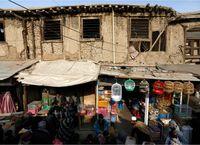 pasar burung Kabul