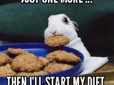 10 Meme Kocak Cobaan Diet yang Bikin Gagal Kurus