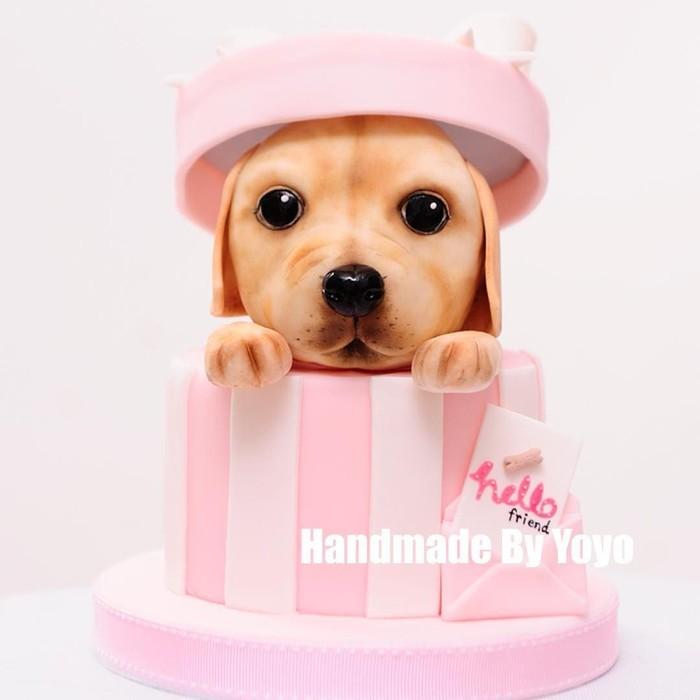 Ini juga terbuat dari kue, lho. Baik kotak dan anak anjingnya. Mata dan hidungnya yang mengkilap bikin kue ini mirip anjing sungguhan. Foto: Instagram