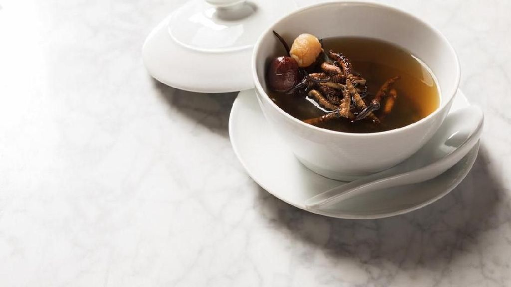 Sup Isi Jamur Ulat Ini Harganya Rp 9.3 Juta Semangkuk, Apa Istimewanya?