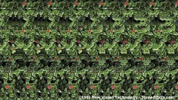 Stereogram adalah ilusi optik yang menyembunyikan sebuah gambar tiga dimensi dan hanya dapat dilihat dengan metode tertentu. Kuncinya, fokus!