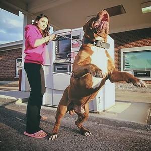 Ngambil Uang di ATM Takut Dibegal? Cegah Pakai Cara Ini