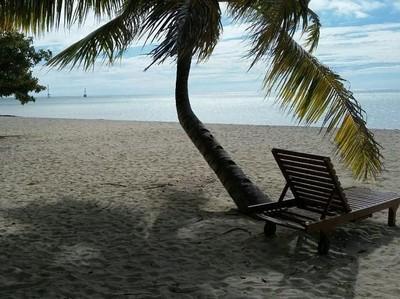 Pantai Cantik dan Anak Penyu Lucu di Sangalaki