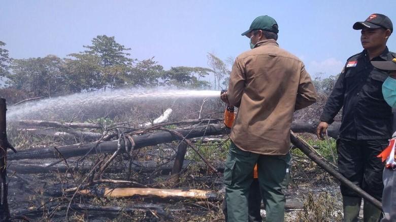 Masuki Kemarau Waspada Kebakaran Hutan Dan Lahan