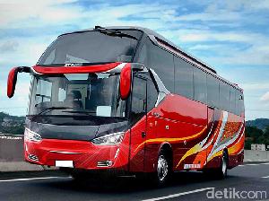 Sasis Mercy, Scania dll Jadi Bus Gagah di Tempat Ini