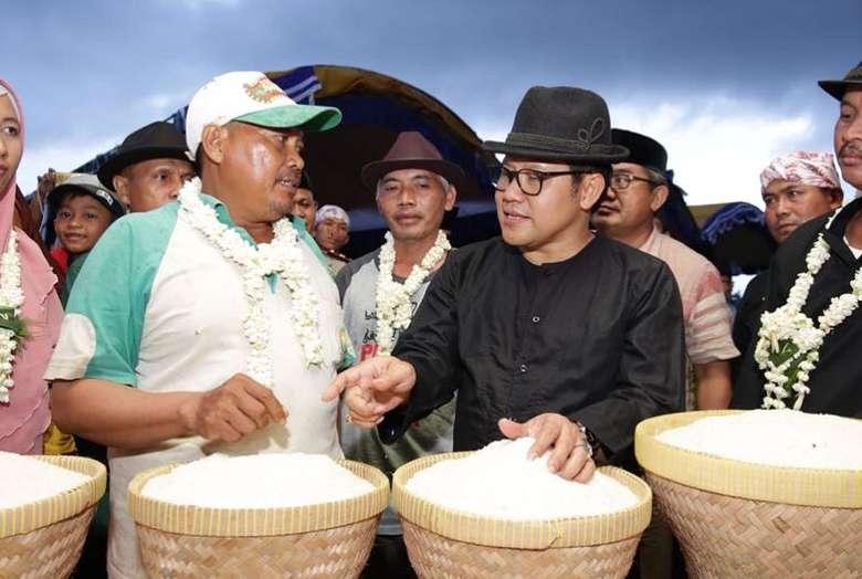 Akhir tahun kemarin, Cak Imin mengunjungi Indramayu. Ia sempat berbincang dengan petani setempat yang punya gerakan menanam padi secara alami untuk hasilkan beras organik. Foto: Instagram cakiminow