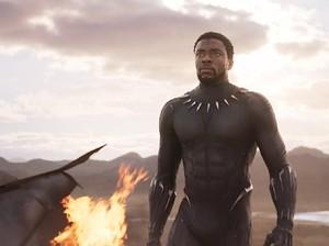 <i>Post Credit</i> Winter Soldier di Black Panther Berdurasi Lebih Panjang