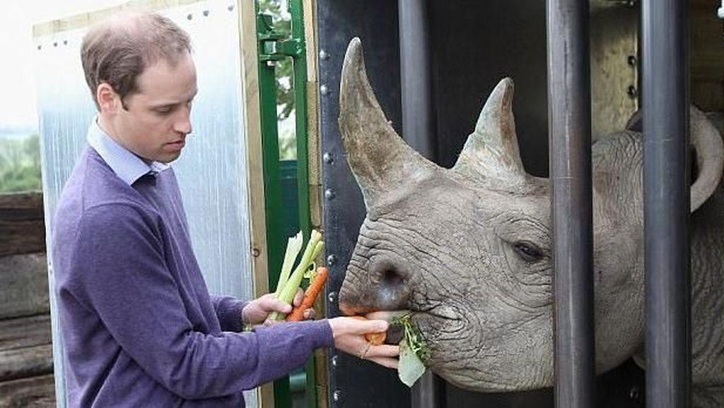 Ketika Pangeran Inggris Jatuh Cinta dengan Afrika