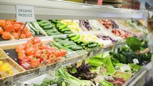 Sederet Makanan Sehat yang Harus Kamu Makan Setiap Hari