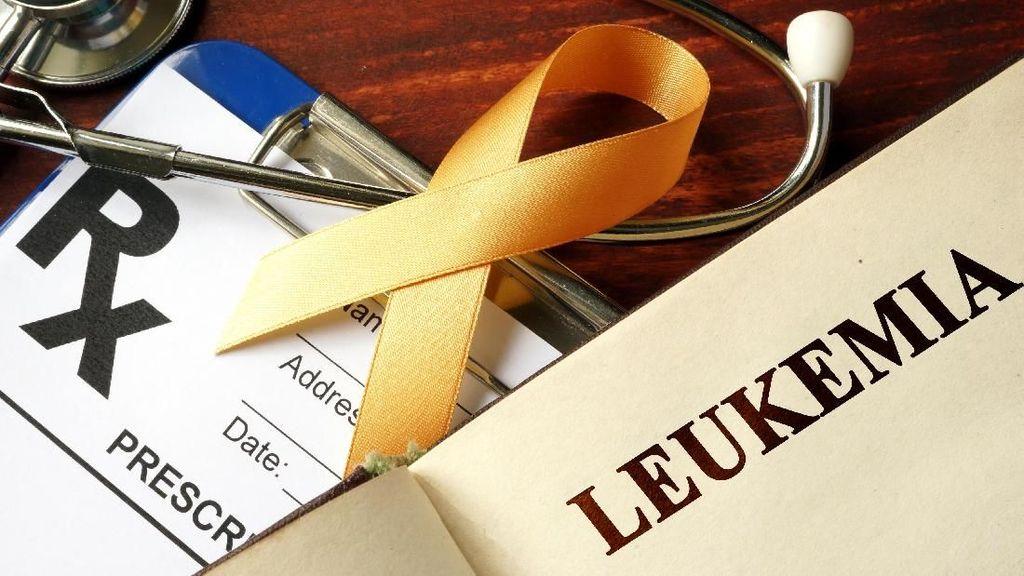 4 Tipe Utama Leukemia yang Perlu Kamu Tahu, Salah Satunya Mirip Anemia
