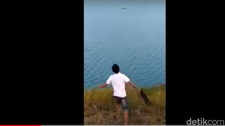 Sadis! Pria Ini Lempar Anjing Jadi Santapan Buaya di Sungai