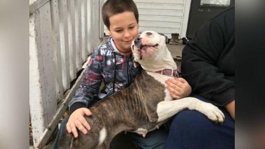 Ekspresi Bahagia Bocah AS yang Diselamatkan Anjingnya dari Perampokan