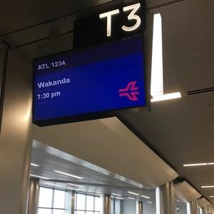 Saat Bandara di AS Bikin Heboh karena Ada Jadwal ke Wakanda