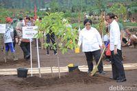 Penasaran Situ Cisanti yang Didatangi Jokowi? Yuk Ke Sana Akhir Pekan Ini