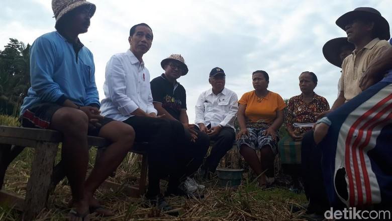 Foto: Dialog Jokowi dan Petani Bali