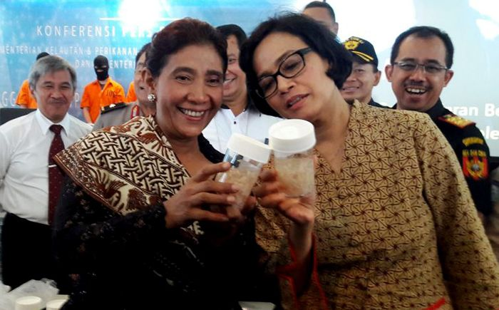 Pada 26 Oktober 2016, Sri Mulyani dan Susi menggagalkan penyelundupan benih lobster dari Indonesia ke Singapura dan Vietnam. Eduardo Simorangkir/detikcom.
