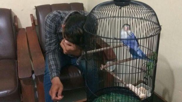 Deni dan burung Lovebird curiannya. (Foto: Eko Sudjarwo)